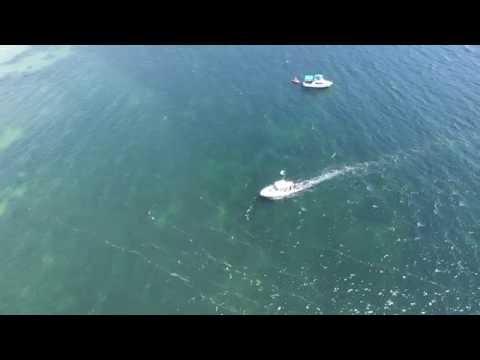 Phantom 3 Fly Vancouver island: Fly over Hornby island beaches