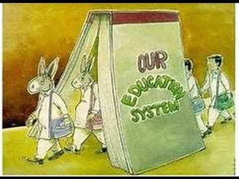 Education 101:  The Dumbing Down of America