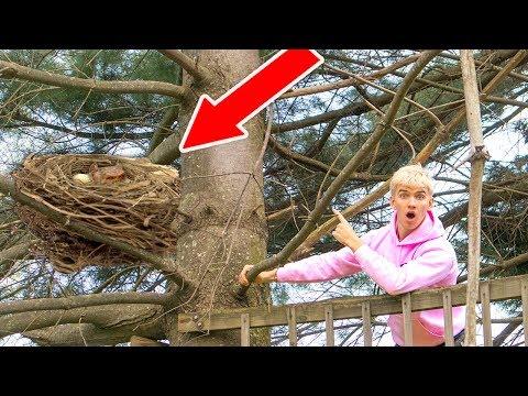 MONSTER IN POND!! (HIDING IN TREE)