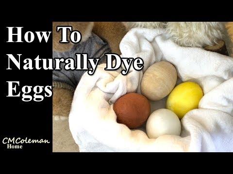 Easy Natural Egg Dye