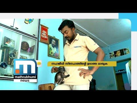 Maveesh And A Baby Monkey He Saved| Nalla Vartha, Episode 53| Mathrubhumi News