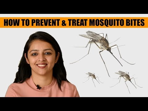 HOW TO PROTECT BABY FROM MOSQUITO BITES & HOW TO TREAT A BITE