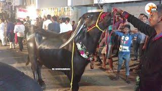 Sadar Festival II Buffalo Carnival of Khairatabad II Hyderabad 2017(6) -  Vidozee