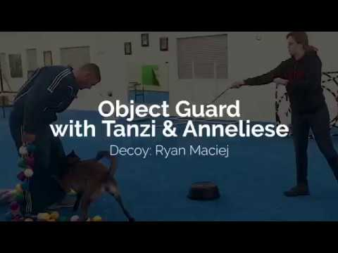 Object Guard with Tanzi & Anneliese
