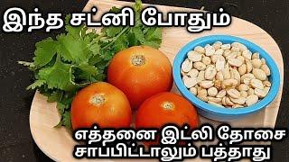 இந்த ஒன்னு போதும் இட்லி தோசை எத்தனை சாப்பிட்டாலும் பத்தாது|peanut chutney|verkadalai chutney