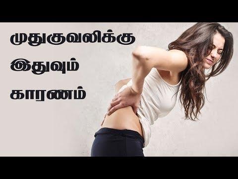 Lower Back Pain in Women - Top Causes of  Back Pain | பெண்களின் முதுகு வலிக்கான காரணம்