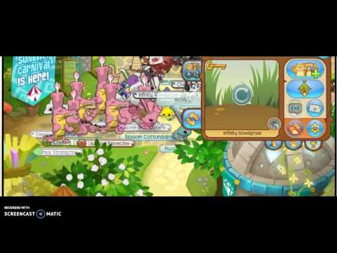 Animal Jam- how to get adopted