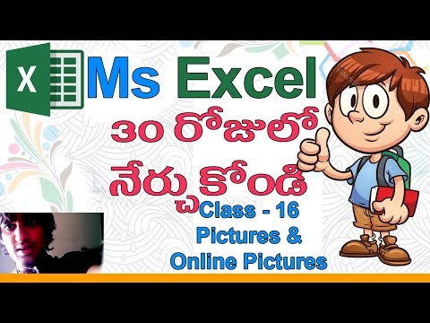 Ms Excel in Telugu | Telugu Ms Excel Classes | Class - 16 |👧| Pictures | Online Pictures
