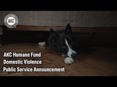 AKC Humane Fund Domestic Violence PSA 2