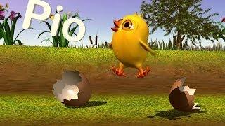 El pollito Pío 3D - Cantan Los Pollitos