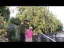 (State vs Federal rights): Paula Gloria's Mom's Back Yard in Berkeley w/ Richard Koening