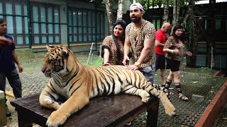 Playing With Real Tigers 😱- Thailand Trip[EP-1]