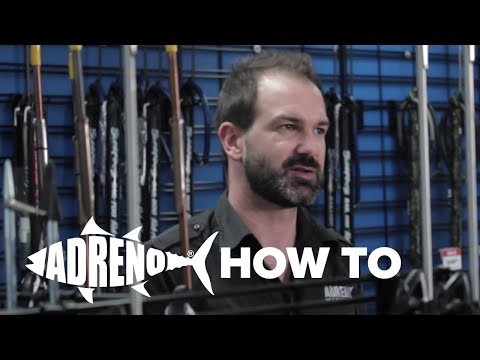 Targeting Pelagic Fish When Spearfishing | ADRENO