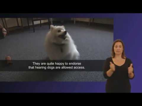 Access Rights - Hearing Dogs for Deaf People