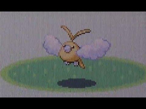 [BQ #4] Live Shiny Swablu After 16,066 REs! (Pokemon Ruby)