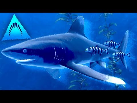 SHARKS HAVE FRIENDS!!! - Depth | Ep17 HD