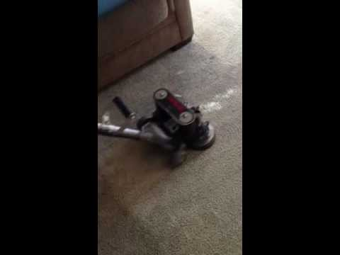 Classic Carpet Care   Cleaning Heavily Soiled Carpet