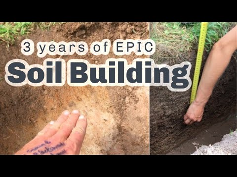 S4 ● E81 Building 25cm of soil in 3 years