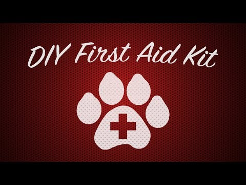 DIY First Aid Kit for Cat or Dog