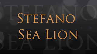 """Stefano Sea Lion"" Trailer 3"