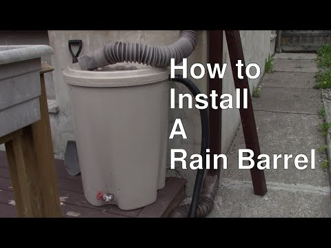 Rain Barrel - How to Set up!
