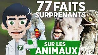 77 FAITS SURPRENANTS SUR LES ANIMAUX