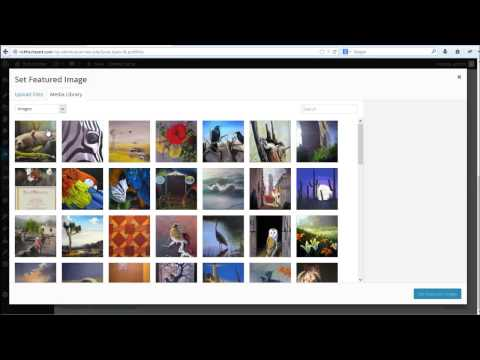 Chocolate Theme Add Image  - Phoenix Web Design | www.phxsites.com
