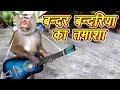 Bandar Bandriya Ka Tamasha 2019 Funny Video Comedy Video From My Phone 2018