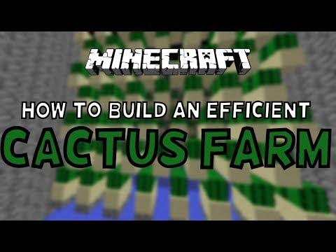 How To Build An Efficient Cactus Farm! 1.12+ (easy)