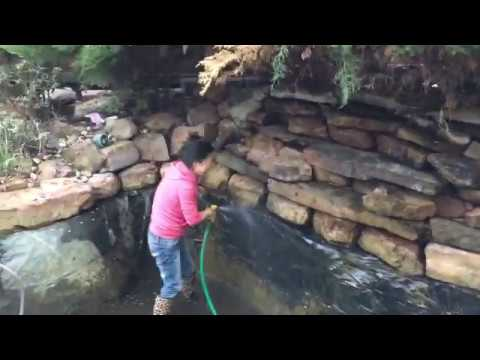 Koi Pond Cleaning Time