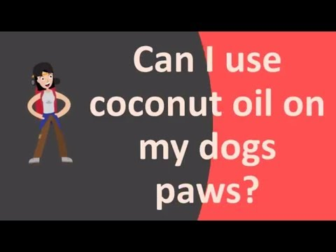 Can I use coconut oil on my dogs paws ?