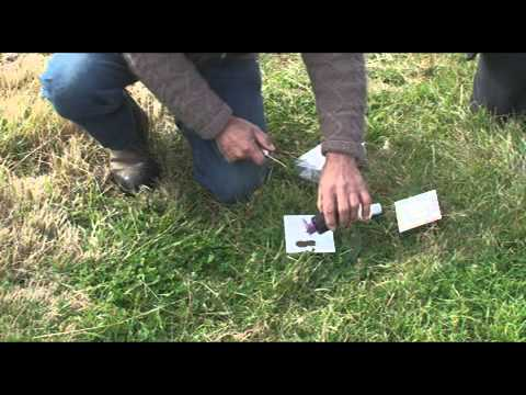Find out how easy it is to test your soil pH!