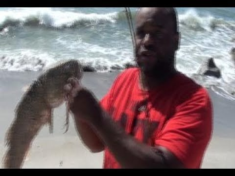 How To Surf Fish Red Drum
