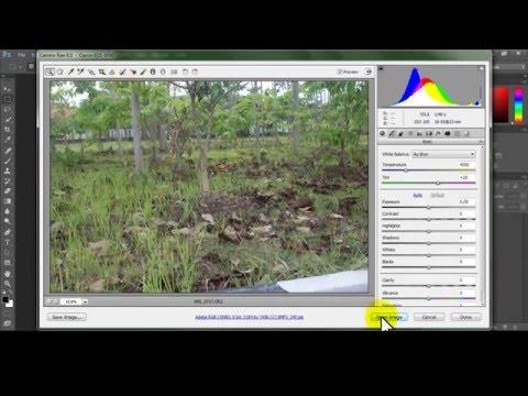 Cara Mengubah Foto Format CR2 / Camera Raw ke JPG di Photoshop