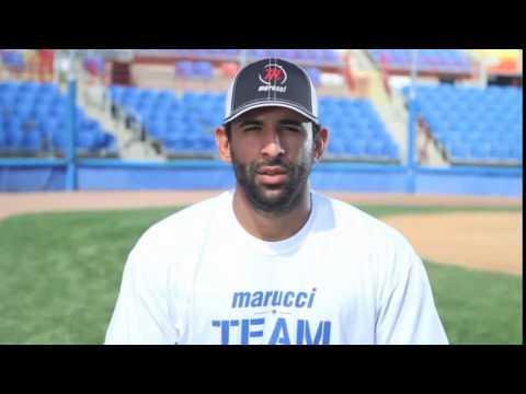 Marucci Jose Bautista Maple Wood Bat  JB19 Adult