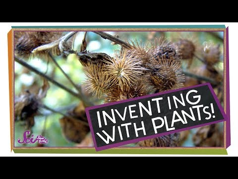 Inventing with Plants!