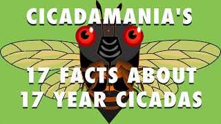 17 Facts About 17 Year Cicadas