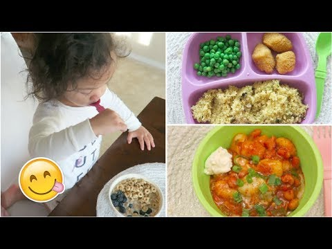 Meal Ideas for toddlers// What my toddler eats in a day!