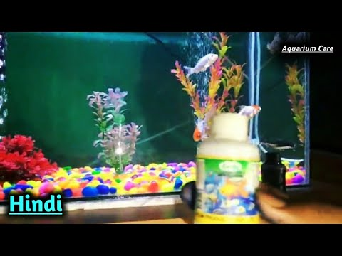 how to care of fish tank hindi, how to clean fish aquarium hindi, Medicine for fish hindi