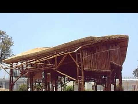 Thatch House Construction