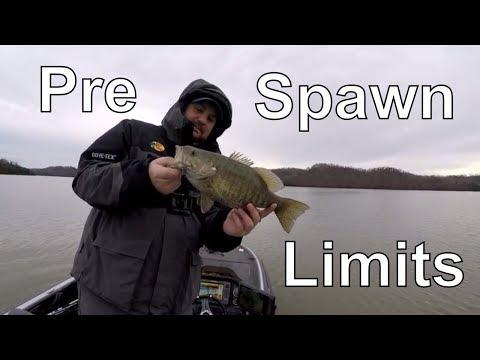Pre Spawn Muddy Water Bass Tournament - Limits