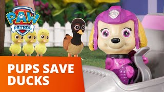 Skye and Marshall Save the Stuck Ducks! 🦆 - PAW Patrol Toy Pretend Play Rescue