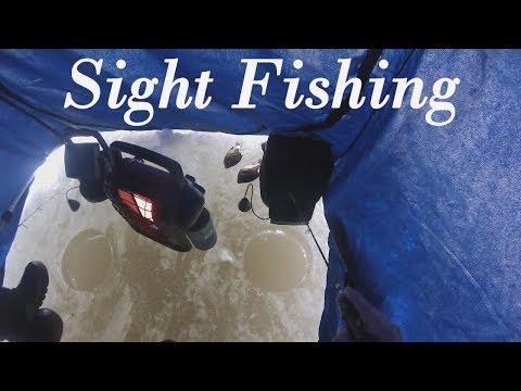 Sight Fishing Big Bluegill- I Fell Through the Ice