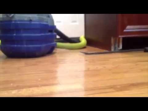 Wood Floor Water Damage Repair
