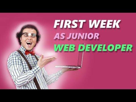 First Job of Junior Web Developer