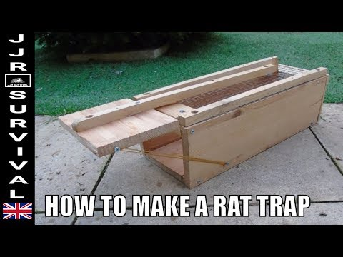 HOW TO MAKE A RAT TRAP