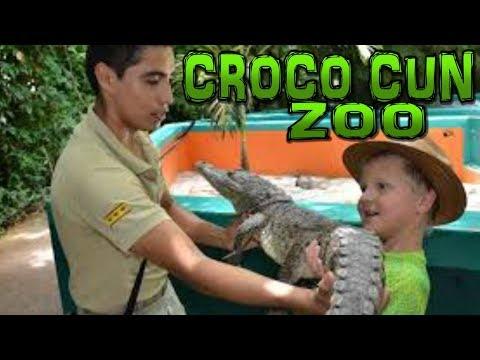 CROCO CUN ZOO Cancun - Puerto Morelos Mexico 4K