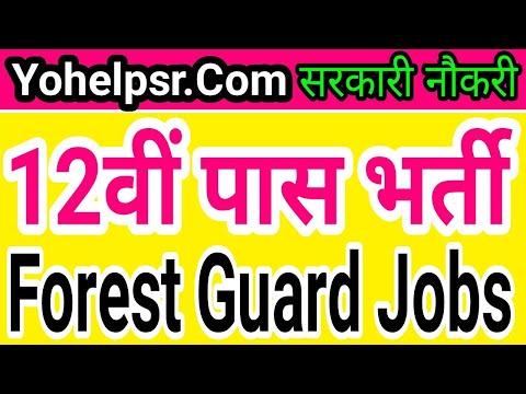 12th Pass Forest Guard Jobs   Forest department bihar Police Jobs  