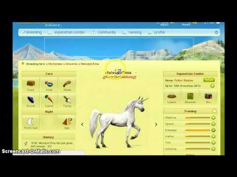 Unicorn Extravanganza, Howrse Handy Dandy Guide