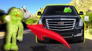 Kermit The Frog Finds A New ROOMATE in The ARIZONA DESERT!